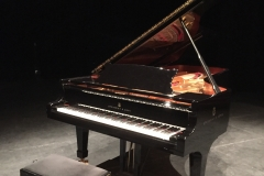 steinway on stage
